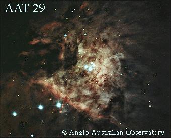 [M42 detail, AAT 29]